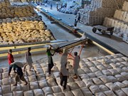 Can Tho enviará primer lote de arroz a Irán