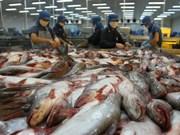 Pescado Tra de Vietnam conquista a consumidores internacionales por su  nutricional superior