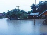 Vietnamitas en el exterior respaldan a laosianos en superación de secuelas de desastre natural