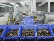 Programa de monitoreo de Estados Unidos preocupa a empresas de mariscos vietnamitas