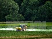 Ciudad Ho Chi Minh moviliza contribución de vietnamitas en ultramar a desarrollo de agricultura de alta tecnología