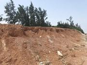 Provincia vietnamita de Ninh Thuan realiza labores de forestación con apoyo japonés