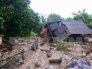 Provincia vietnamita destina fondo para recuperar producción agrícola tras inundaciones