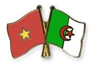 Celebran aniversario 55 de establecimiento de nexos diplomáticos Vietnam-Argelia
