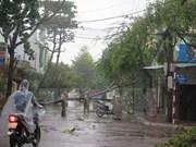 Vietnam responde a efectos del tifón Damrey