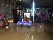 Japón presta asistencia a provincias vietnamitas afectadas por tifón Damrey