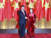 Presidenta del Parlamento de Vietnam se reúne con Xi Jinping
