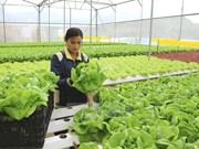 Debaten en Hanoi directrices para desarrollo ganadero del Sudeste Asiático