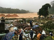 Vietnamitas en ultramar recaudan fondos para apoyar la superación de consecuencias de tifón Damrey