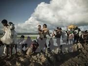 Bangladesh y Myanmar cooperan con agencia de ONU para refugiados para repatriación de rohingyas