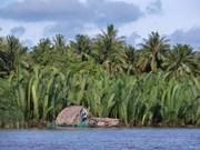 Ben Tre, la tierra de los cocoteros, busca atraer a más turistas
