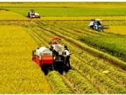 Provincias del Delta del Mekong de Vietnam e India amplían cooperación agrícola
