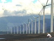Inauguran en provincia sudvietnamita construcción de primera planta de energía eólica