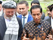 Indonesia apoya a Afganistán en proceso de paz