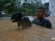 Cantidad de muertos por ciclón en Indonesia aumenta a 41