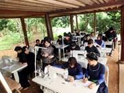 Opera con eficiencia 33 por ciento de cooperativas agrícolas en Vietnam