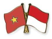Vietnam e Indonesia agilizan cooperación en seguridad