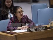 Vietnam llama a una estrategia integral de la ONU para mantener la paz