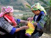 Ayuda de ONGs extranjeras contribuye a desarrollo de Vietnam