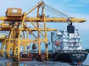 Exportaciones de fertilizantes de Vietnam registran crecimiento