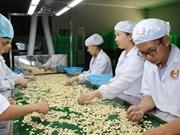 Vietnam ingresa en 2017 fondo multimillonario por exportaciones de anacardo