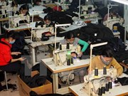 Registran en Ciudad Ho Chi Minh alta demanda de obreros a finales de año