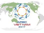 Ciudad Ho Chi Minh logra grandes éxitos en diplomacia durante 2017