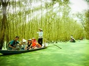 Provincia de Vietnam promueve desarrollo sostenible de turismo