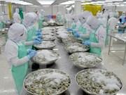 Exportación de camarón de Vietnam logro resultado alentador en 2017