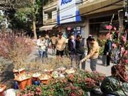 Celebraran numerosas actividades culturales y artísticas en Hanoi por el Tet 2018