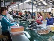 Sector de calzado vietnamita por ingresar 20 mil millones de dólares por exportaciones en 2018