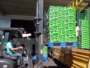 Sabeco de Vietnam logra en 2017 alentador resultado en producción de cerveza
