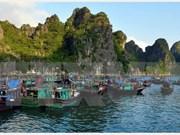 Aldea vietnamita entre las más hermosas del mundo