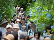 Vietnam lidera visita de turistas del Sudeste Asiático a Japón