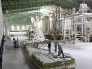 Reportan señales positivas para exportación de arroz de Vietnam en 2018