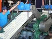 Empresa vietnamita inaugura fábrica de caucho en Cambodia