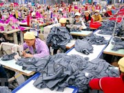 Cerca de 11 mil nuevas empresas se establecen en Vietnam este mes