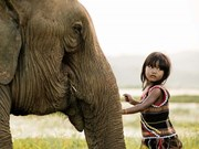 Nominan a fotógrafo francés residente en Vietnam para Trophées des Francais de l´étranger