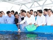 Inician construcción de zona agrícola de alta tecnología en provincia survietnamita