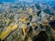 Presentan potencialidades de provincia montañosa norteña de Ha Giang a amigos internacionales