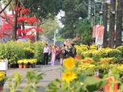 Celebran festival de flores en Ciudad Ho Chi Minh
