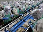 Vietnam reporta aumento de exportación de mariscos