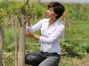 MoriS: la historia detrás de una nueva empresa agrícola