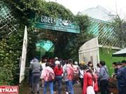 Provincia altiplánica de Lam Dong recibe más turistas durante el Tet