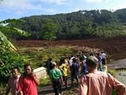 Indonesia: Deslizamiento de tierra sepulta a 25 personas