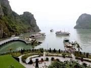 Provincia de Quang Ninh registra alta llegada de turistas durante el Año Nuevo Lunar