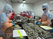 Australia inspecciona cadena de producción de camarones de Vietnam