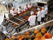 En tendencia alcista exportaciones vietnamitas de verduras y frutas