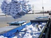 Vietnam por exportar 6,5 millones de toneladas de arroz en 2018