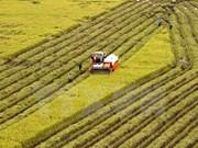 Proponen establecer mecanismo para solucionar exportaciones alimentarias a China